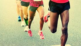 Healthy Bones, Joints & Muscles