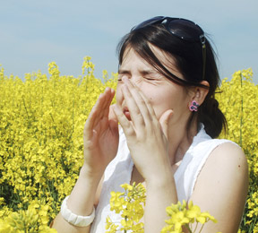 Relief for Eye Allergies