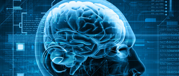 All About Epilepsy image