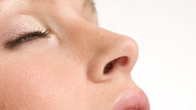 Healthy Nose