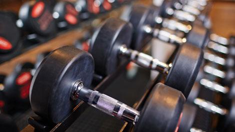 212ec66c6a1 Strength Training   Exercise - Sharecare